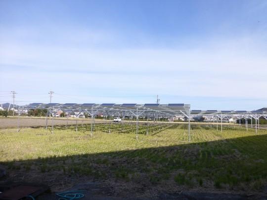 静岡県藤枝市O様稲作(57.2kw)アルミ架台